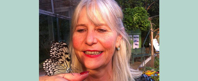 Christina Meissner Papillon
