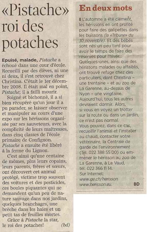 article pistache roi des potaches