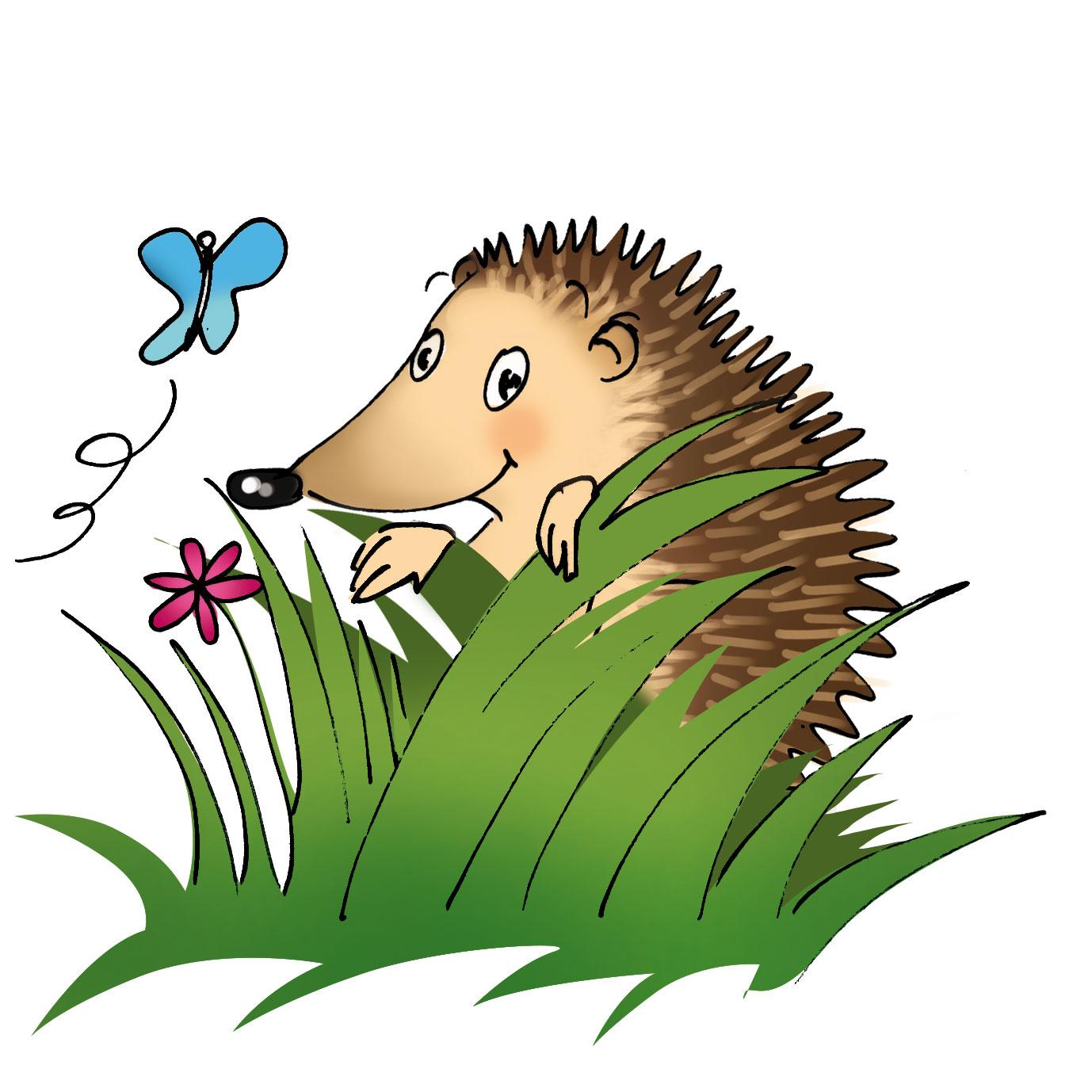 Faites de votre jardin le paradis des h rissons christina meissner - J ai trouve un herisson dans mon jardin que faire ...